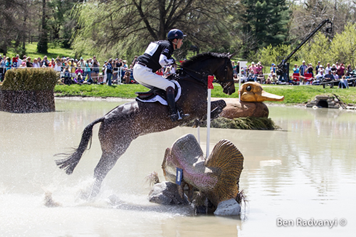 William Fox-Pitt Competes at 2014 Cross-Country on Bay My Hero